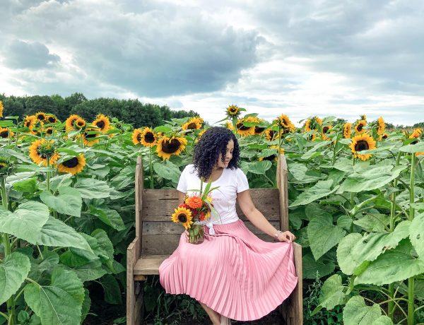 La Belle Coteau du Lac Quebec Sunflowers @TeneishaC